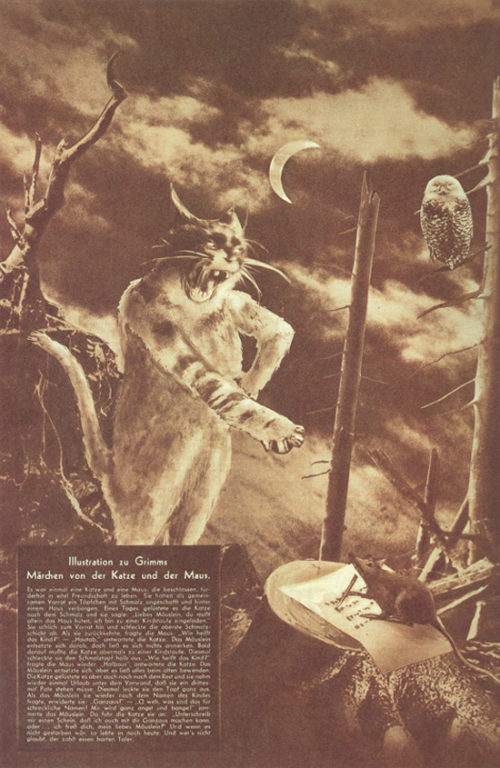 Illustration for Grimm